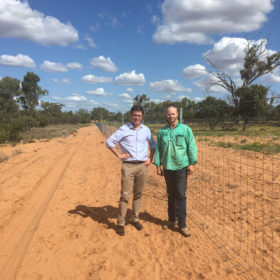 David, with Peter Doneley, sees firsthand how pest exclusion fencing successfully manages total grazing pressure near Longreach. Without measures to control wild dogs, many producers report loses of lamb stock from 60-70%. These figures are disastrous, not only for the producers but also the whole community.  Funding for pest management fencing has produced tangible results with some producers documenting their best lamb marking rates in 10 years as a result of the investment. Wild dog exclusion fencing not only benefits producers and rural communities but also has a great impact on the overall management of total grazing pressure and enables a resurgence of native flora and fauna.